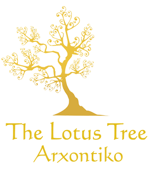 4* Lotus Tree Hotel logo